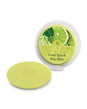 27505-0316-Lime-Splash-Wax-Melt-lr