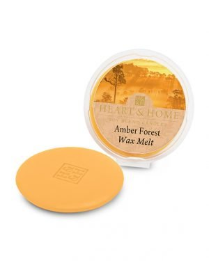 27505-0319-Amber-Forest-1