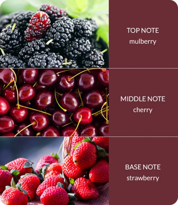 simply-mulberry-notes